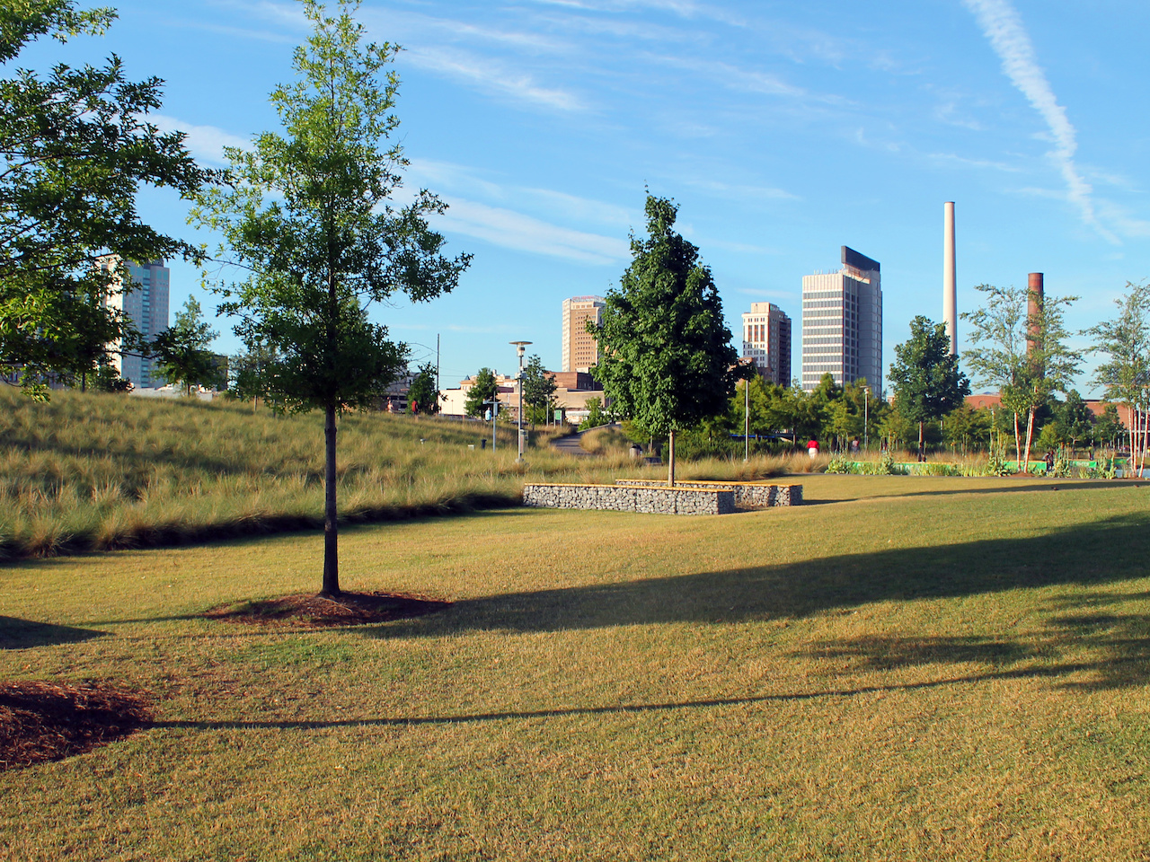 There is ample space for picnics, frisbee or simply reading a book on a blanket at Railroad Park.