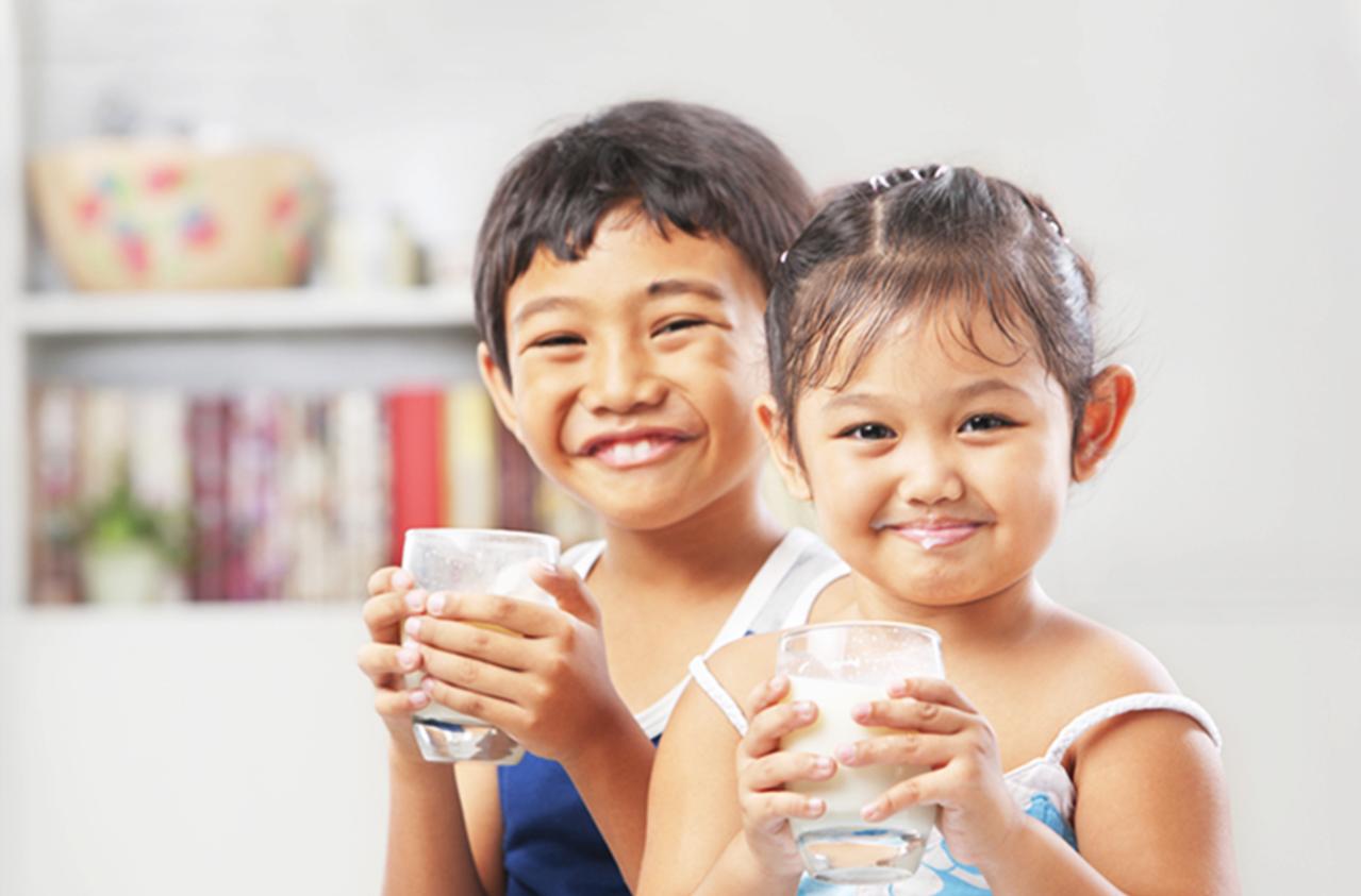 Formulated Milk Powder For Growing Children | Fernleaf - MY