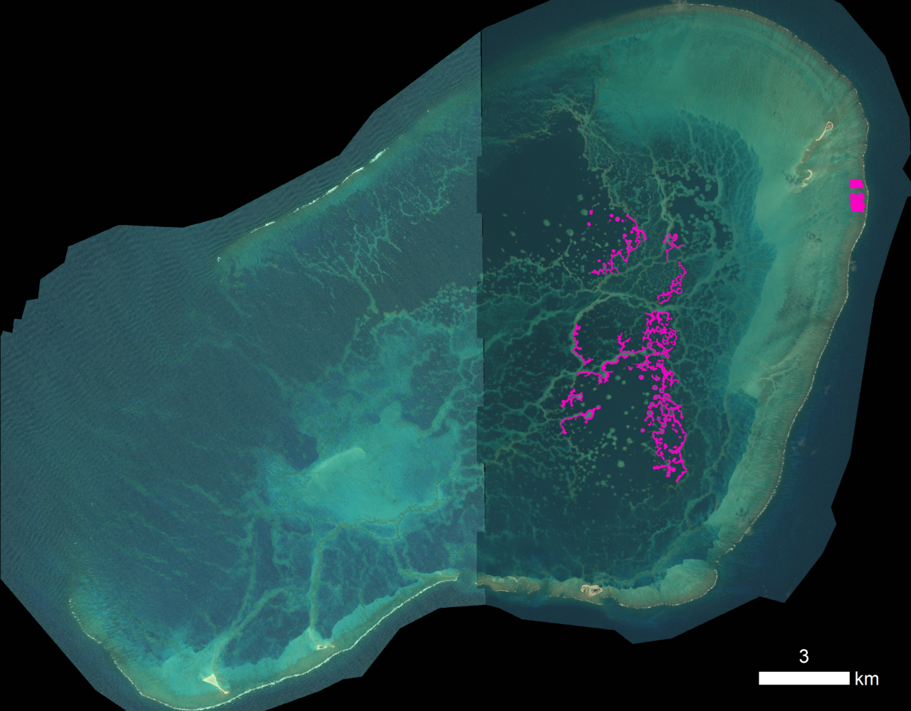"""A satellite image shows the """"maze"""" of reef within Pearl and Hermes Atoll."""