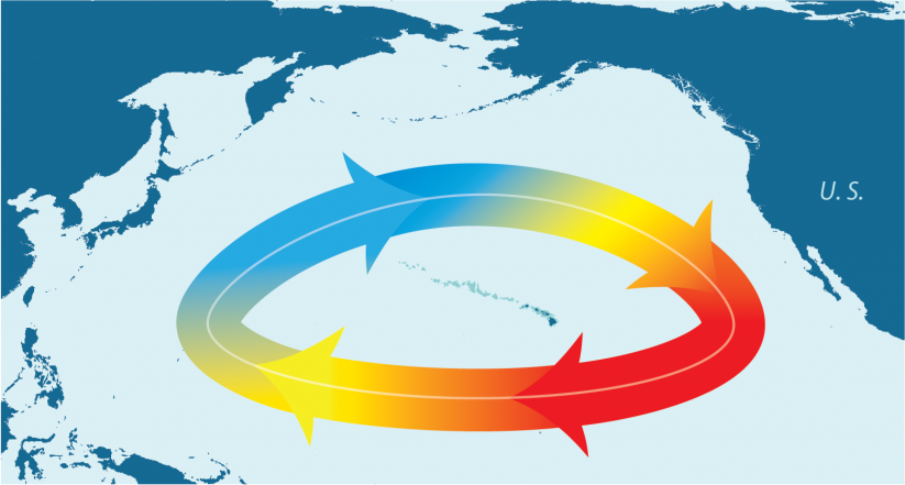 Infographic of the North Pacific Gyre Oscillation, slower gyre rotation in the North Pacific Ocean.