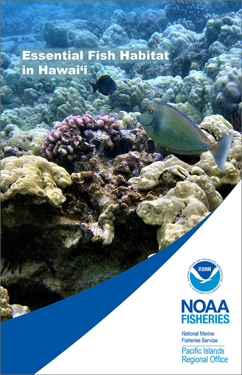 485x750-efh-hawaii-brochure-cover-hi.jpg