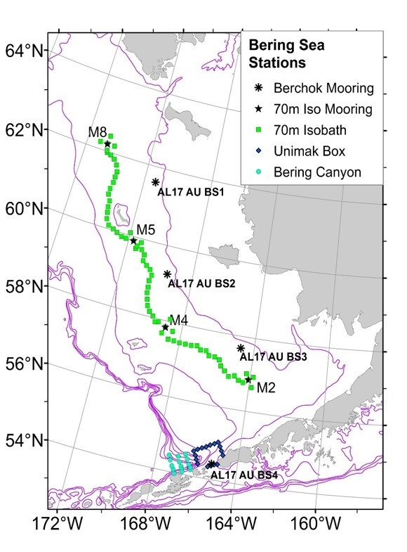 Map of Bering Sea survey stations.