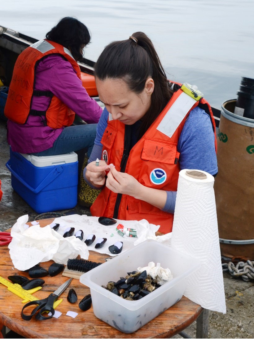 Darien Mizuta studies blue mussels at sea at the offshore mussel farm site