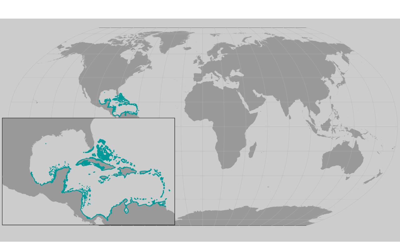 Elkhorn Coral map