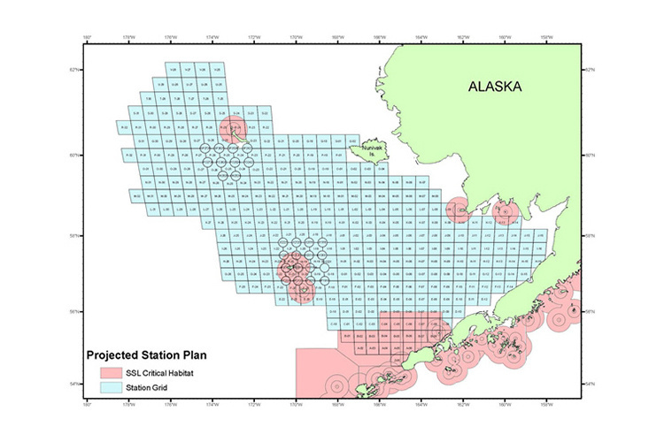 Chart of proposed sample stations for the eastern Bering Sea continental shelf bottom trawl survey