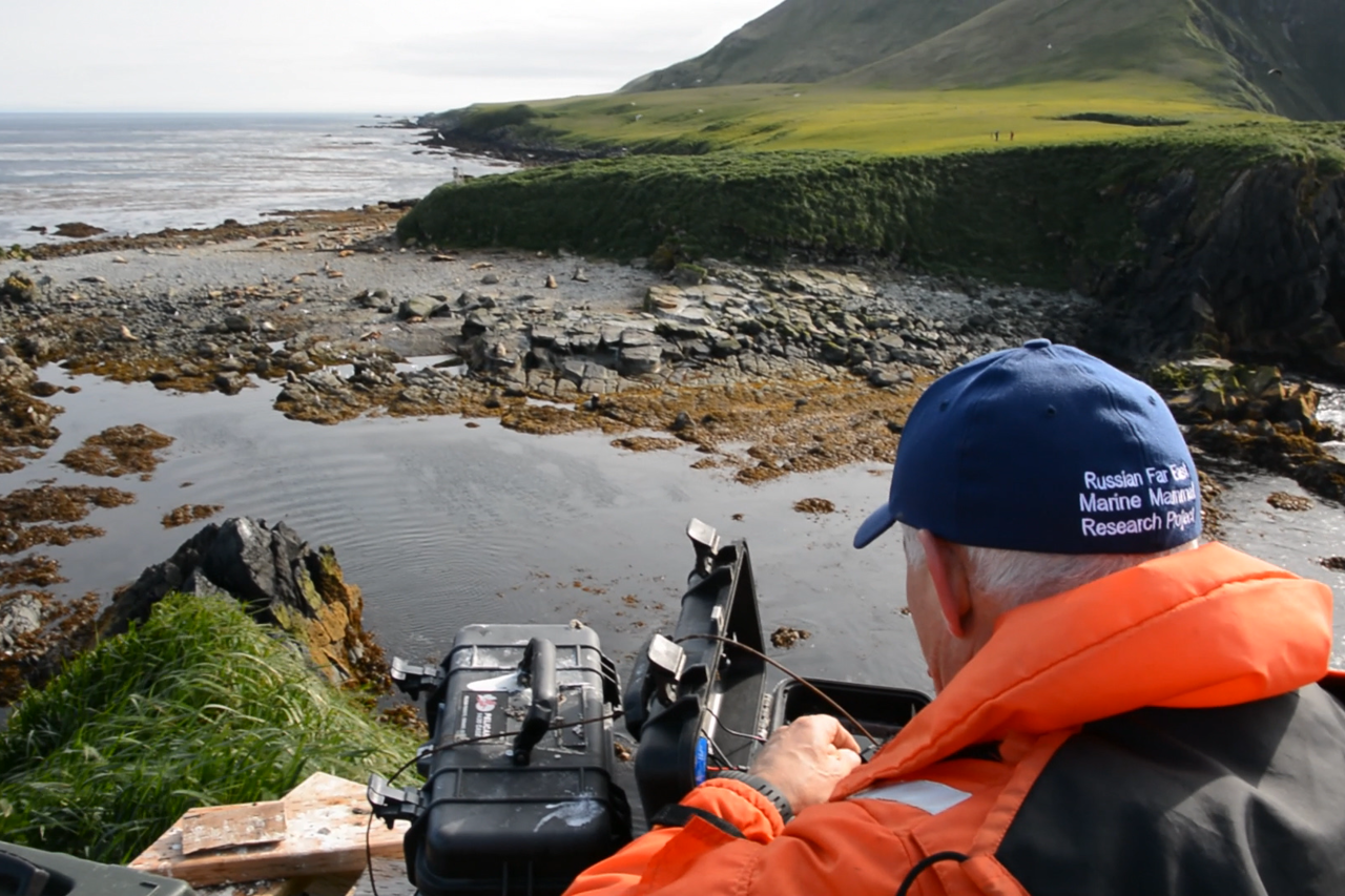 Scientist conducting marine mammal research