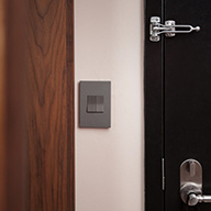 Magnesium switch and wall plate by black hotel door