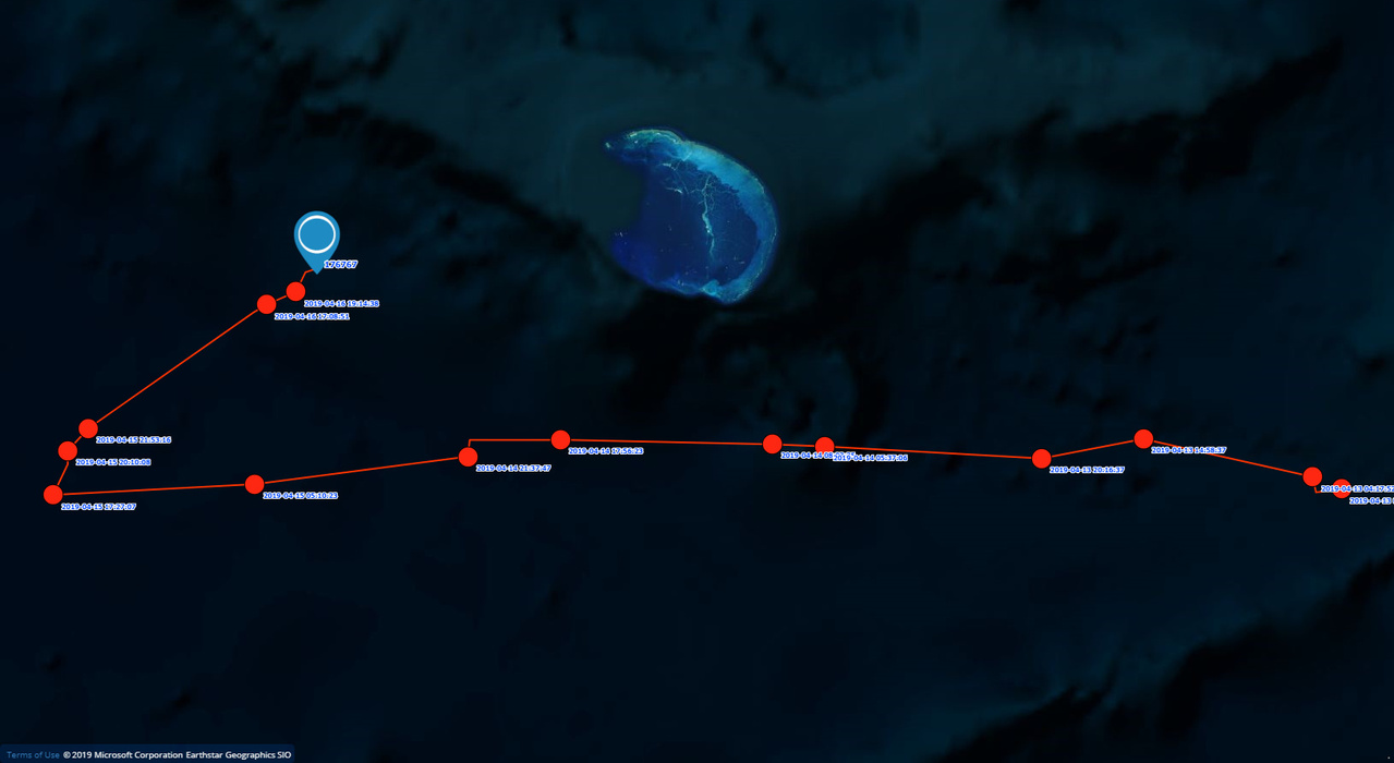 Satellite track of turtle showing it turn back to French Frigate Shoals.