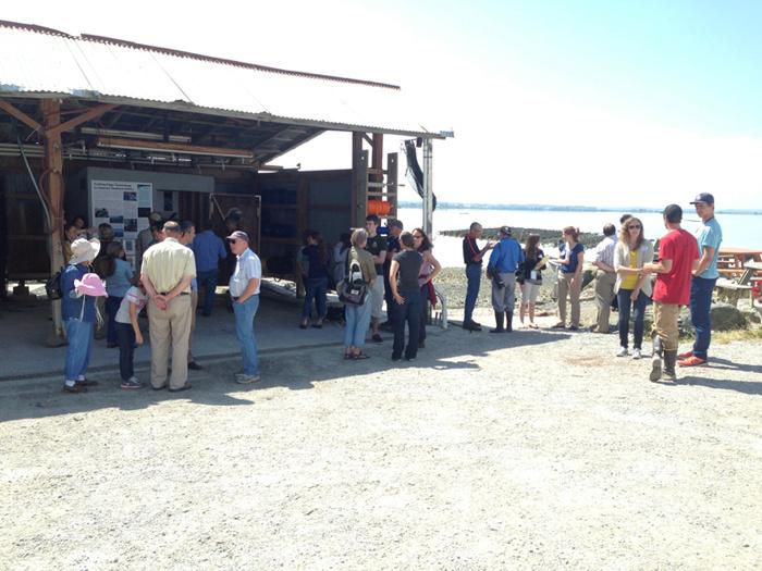 people gathered at Taylor Shellfish Farms