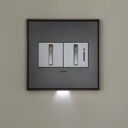 two gang whisper dimmer and switch with accent light from adorne