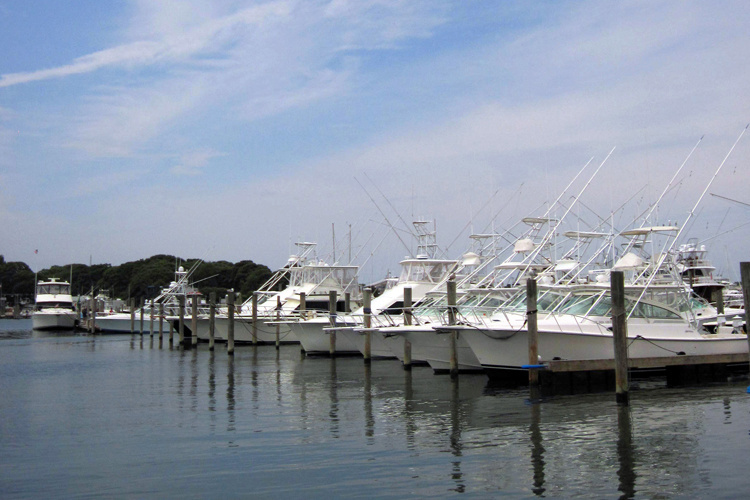 Recreational fishing boats in a marina