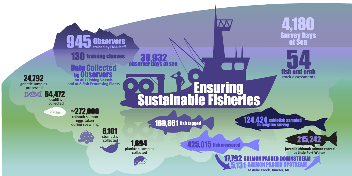 """Alaska Fisheries Science Center 2019 Year in Review infographic """"Ensuring Sustainable Fisheries"""""""