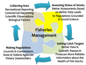 fisheries_management_puzzle.jpg