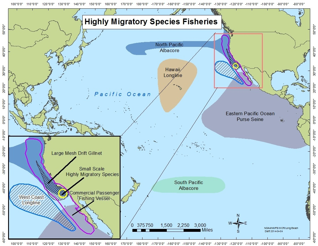 Highly Migratory Species Fisheries