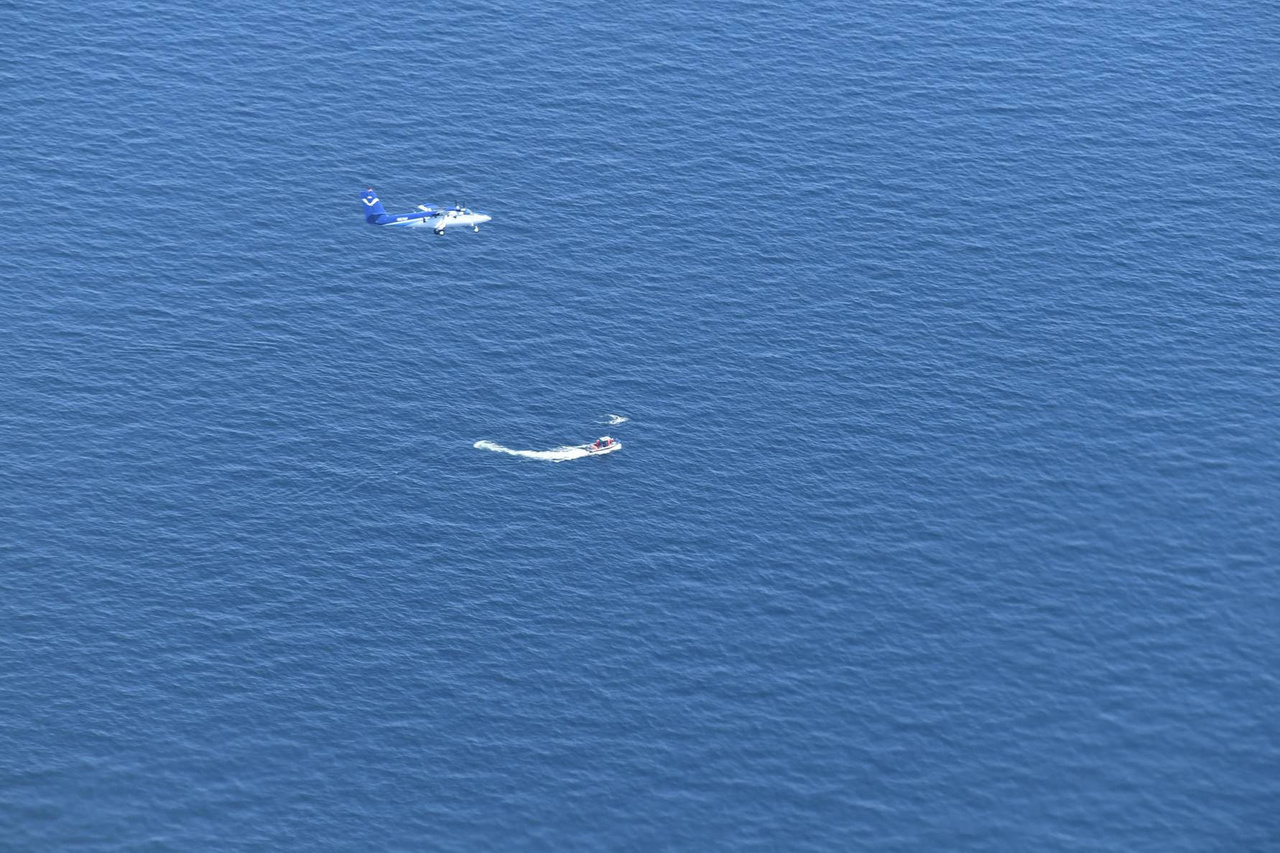 NOAA Twin Otter plane flying over right whale