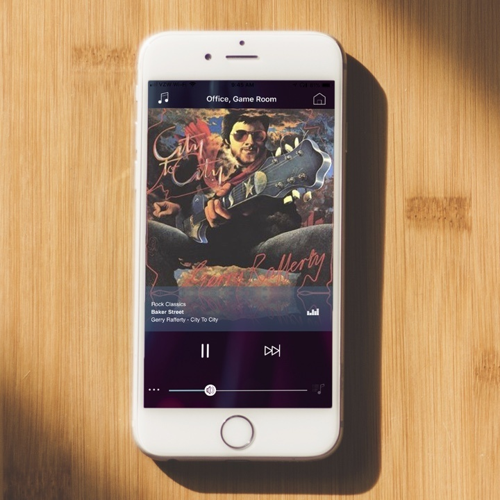 Player Portfolio app on iPhone