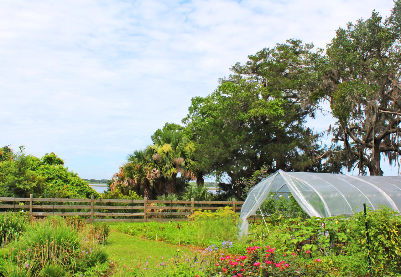 The acres of flowers and vegetables grown at the Greyfield Inn are used not only on the island, but in restaurants in Fernandina Beach.
