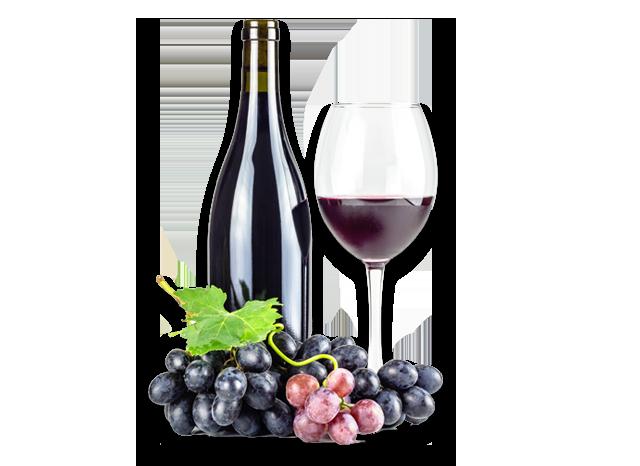 Commercial Wine Cooler Wine Refrigerators Traulsen