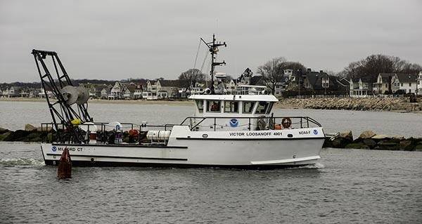 milford rv victor loosanoff in the bay