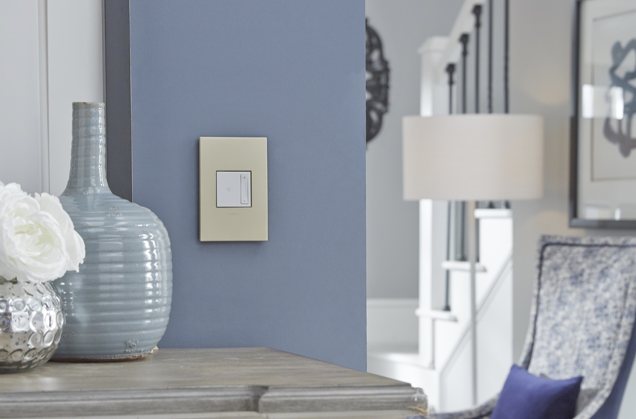 white adorne switch and gold wall plate against powder blue wall in hallway