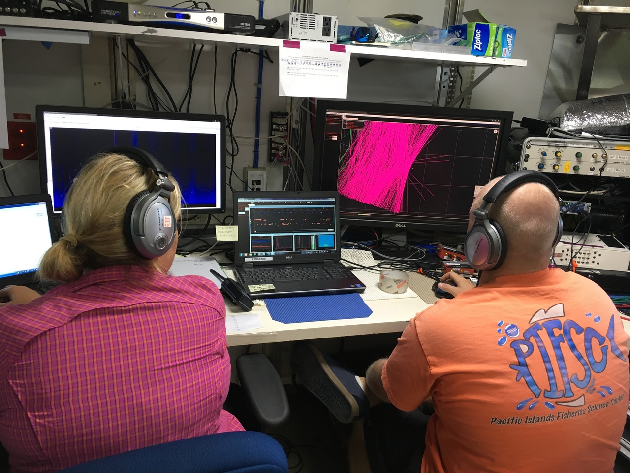 The acoustics team monitors the towed hydrophone array and detect cetaceans in real-time.