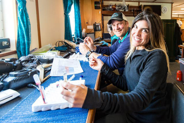 "Jennifer Rego (SeaWorld, San Diego) and John Jansen (AFSC, NOAA) take a break from pipetting harbor seal blood aliquots inside the ""lab"" of the R/V Norseman., Photo by Josh London"