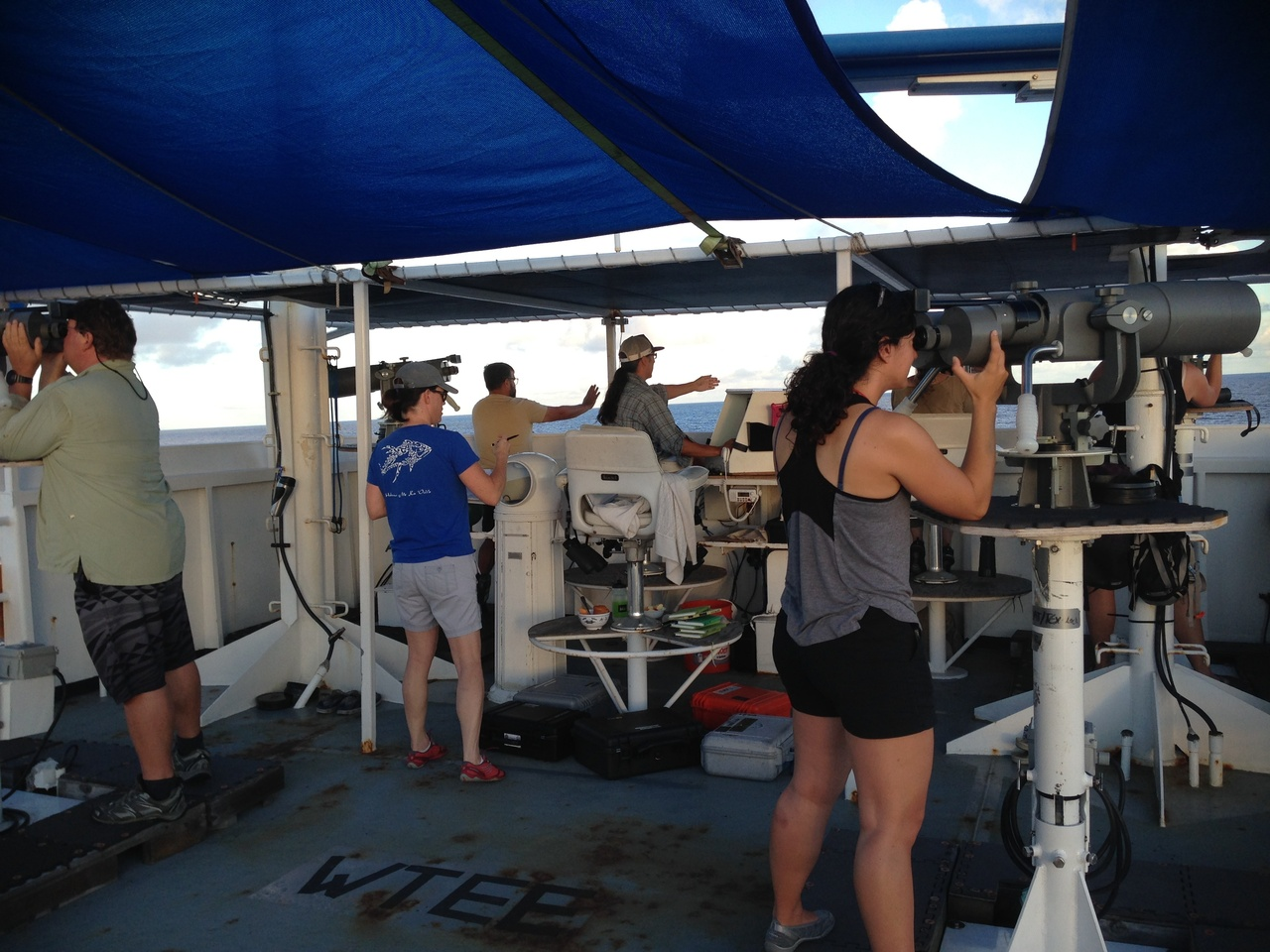 If necessary, all visual observers search for cetaceans on the flying bridge of the NOAA Oscar Elton Sette to keep track of all the individual animals.