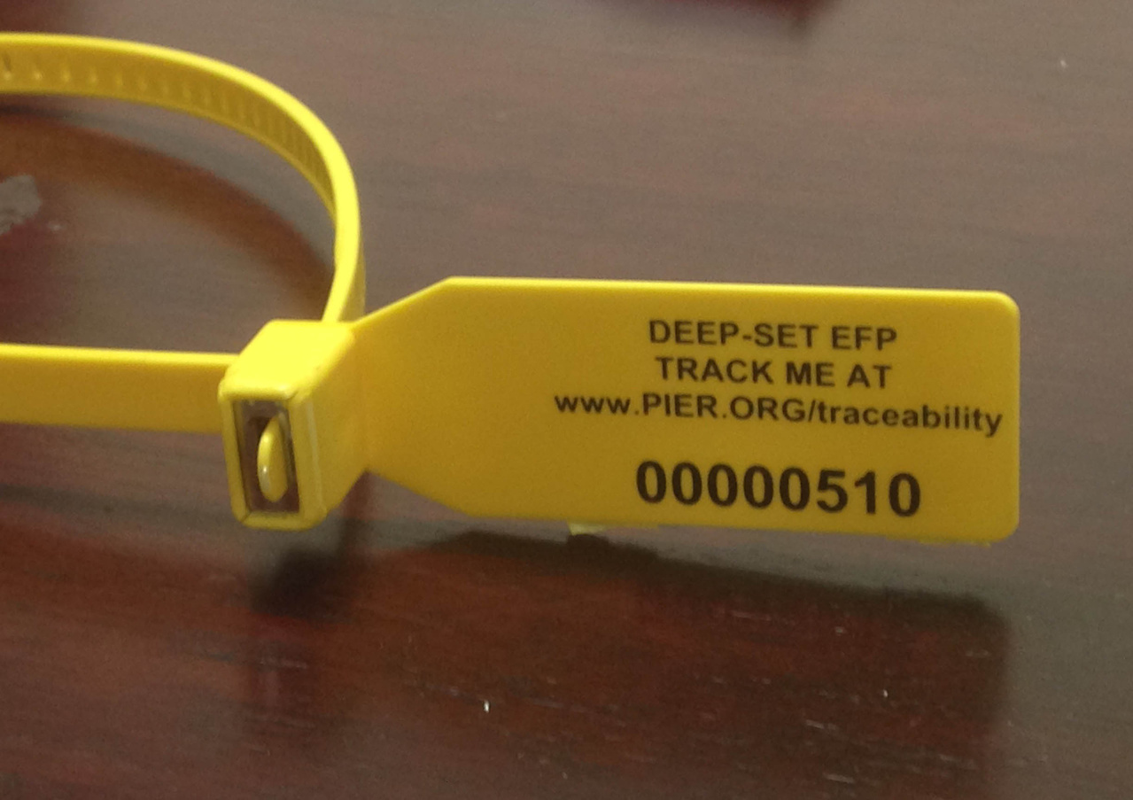 Traceability tag