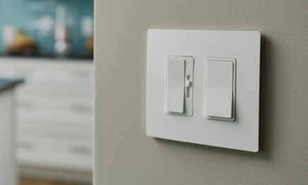 two-gang paddle dimmer and paddle switch in white