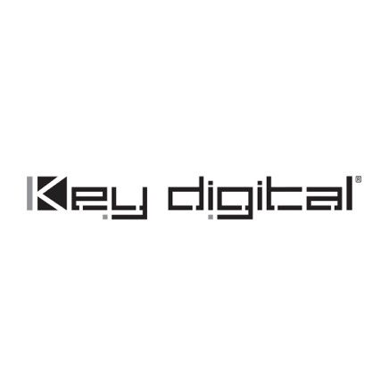 Key digital icon