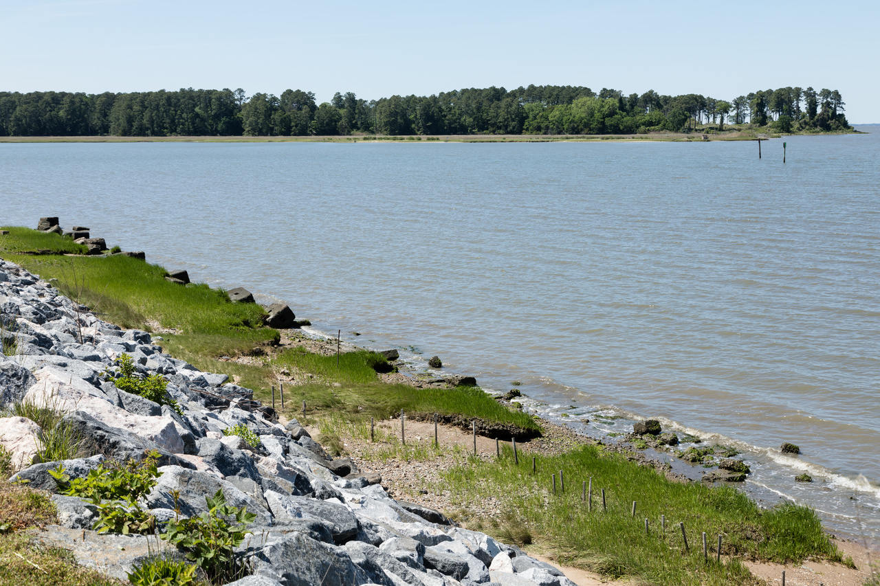 Shoreline project in York County.jpg