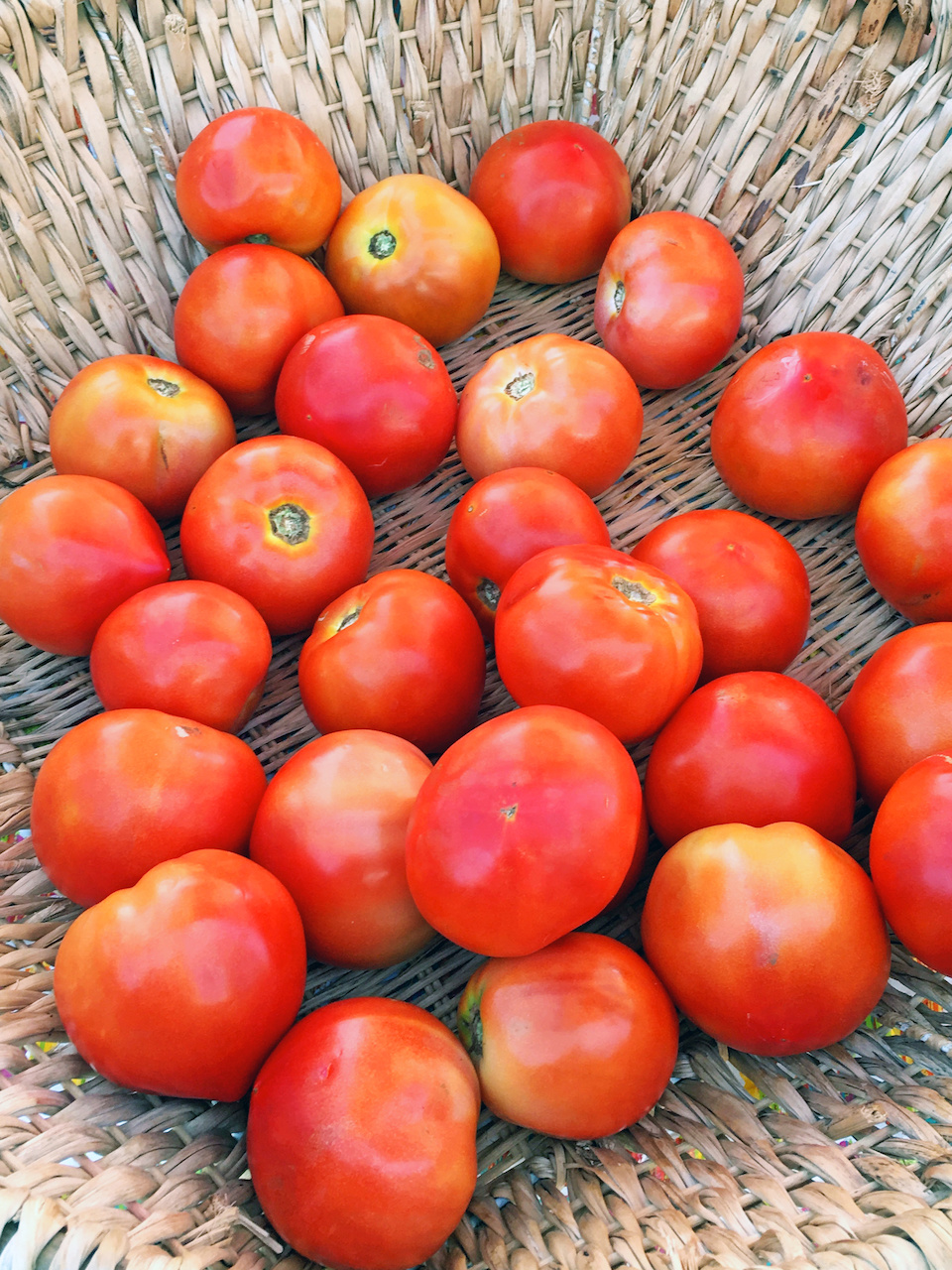 Alabama tomatoes at the Summit Market