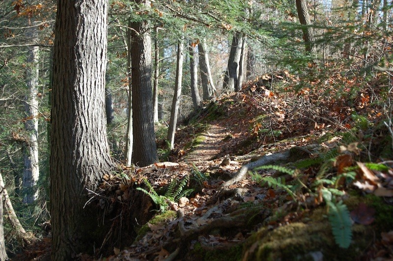 Pack your hiking boots for a trip to Evins Mill