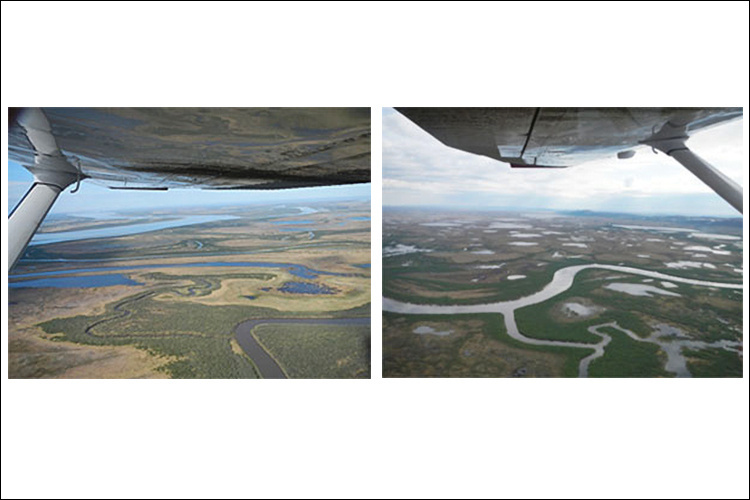 Yukon River Salmon Survey Aerial View