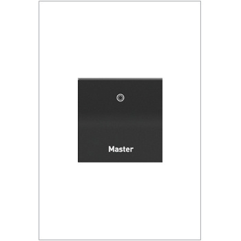 Engraved Paddle™ Switch, 20A, 4WAY, Graphite- Master