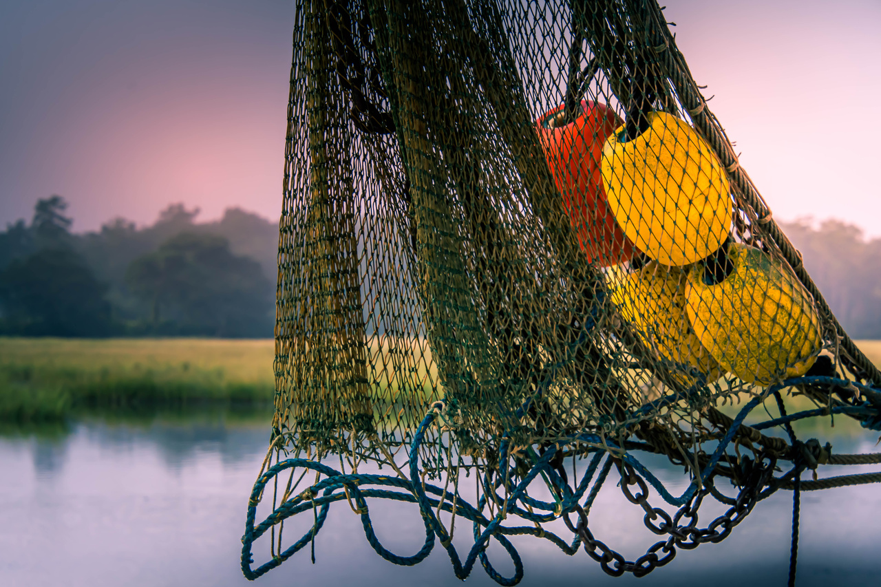 Shrimp net in the Southern US