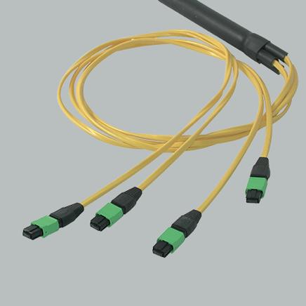 Image of Quiktron Fiber
