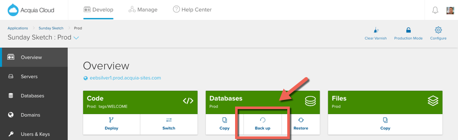 Backup Databases button on Prod Environment - Cloud UI