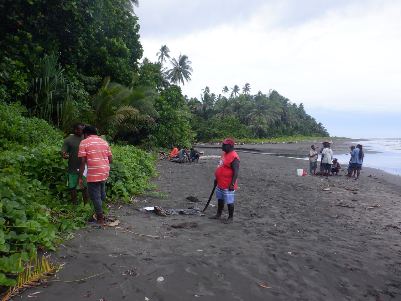 Field team on the beach in Isabel province.