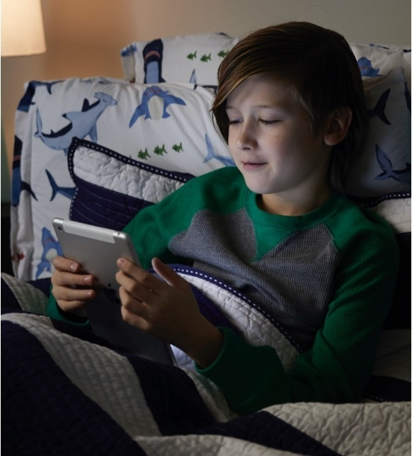 Mobile image of a child using an iPad