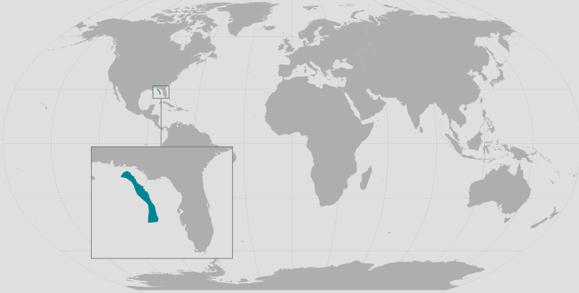 Gulf of Mexico Brydes Whale range map