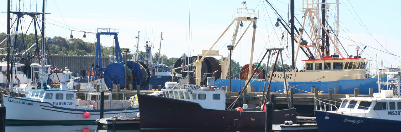 Boats docked at New Bedford Harbor