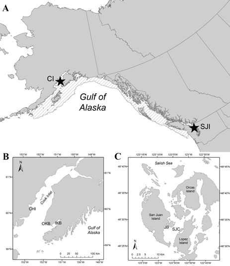 Gulf of Alaska Map with Cook Inlet and Salish Sea insets.