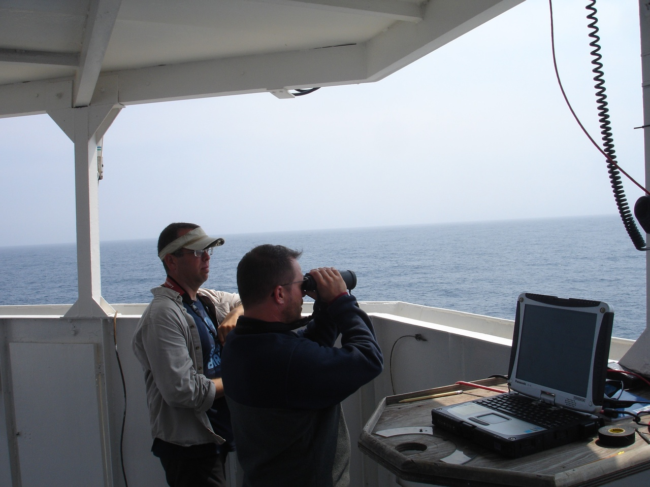 Observers aboard the Henry B. Bigelow at work on the flying bridge.