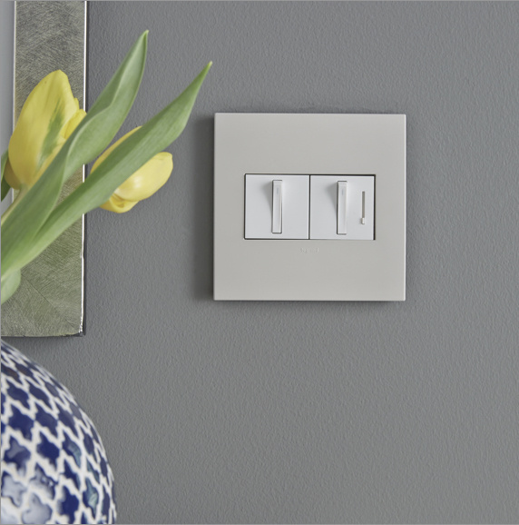 adorne switch and dimmer on gray wall