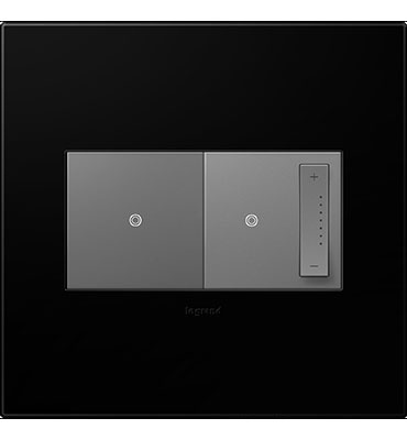 adorne 2-Gang Black Ink Wall Plate