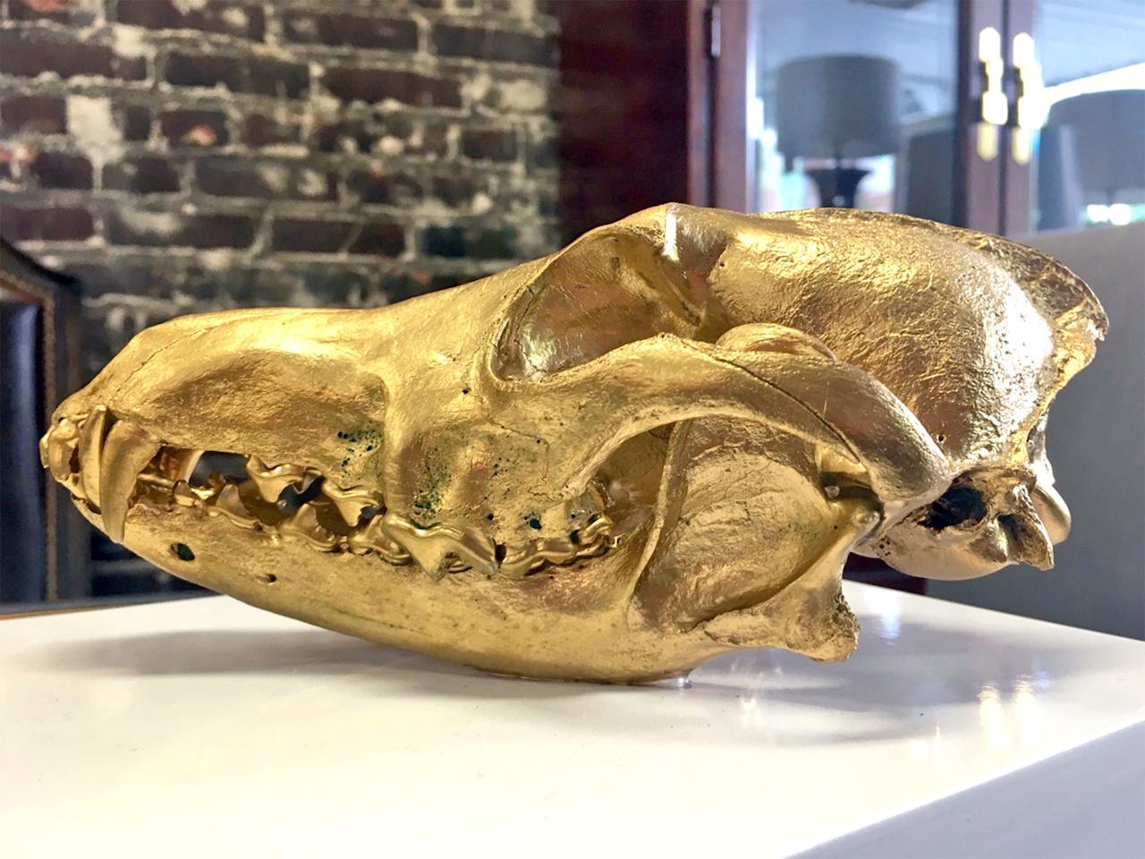 Image: Gold and White Dinosaur Box, $79.