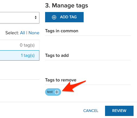 Screenshot showing an application tag to be bulk removed