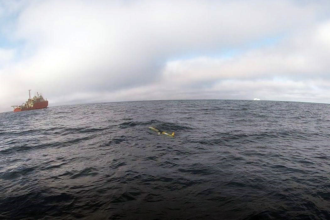 A glider bobbing at the surface in Antarctica.