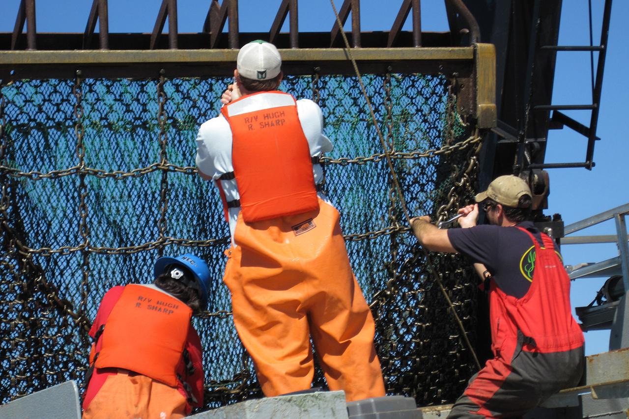 crew working on trawl